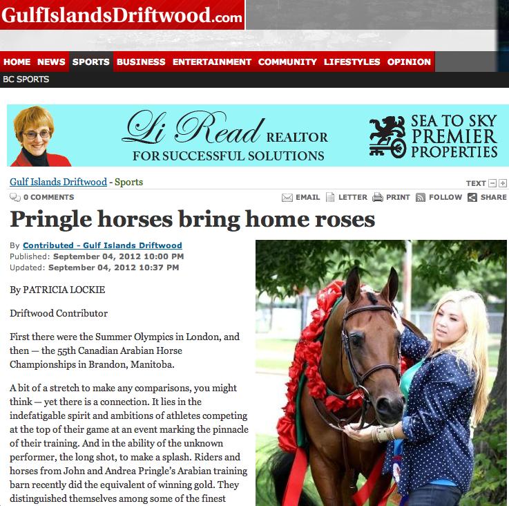 Arabian Horses in the News