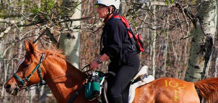 World Equestrian Games - Endurance